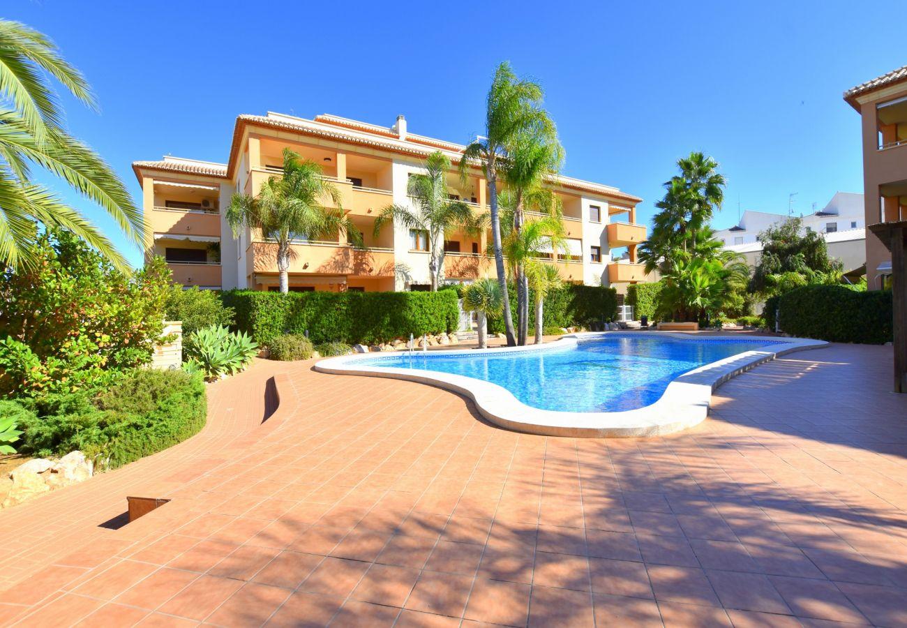 Apartamento en Javea / Xàbia - Piso en Javea planta baja 6p 2 terrazas piscina playa Arenal a 300m
