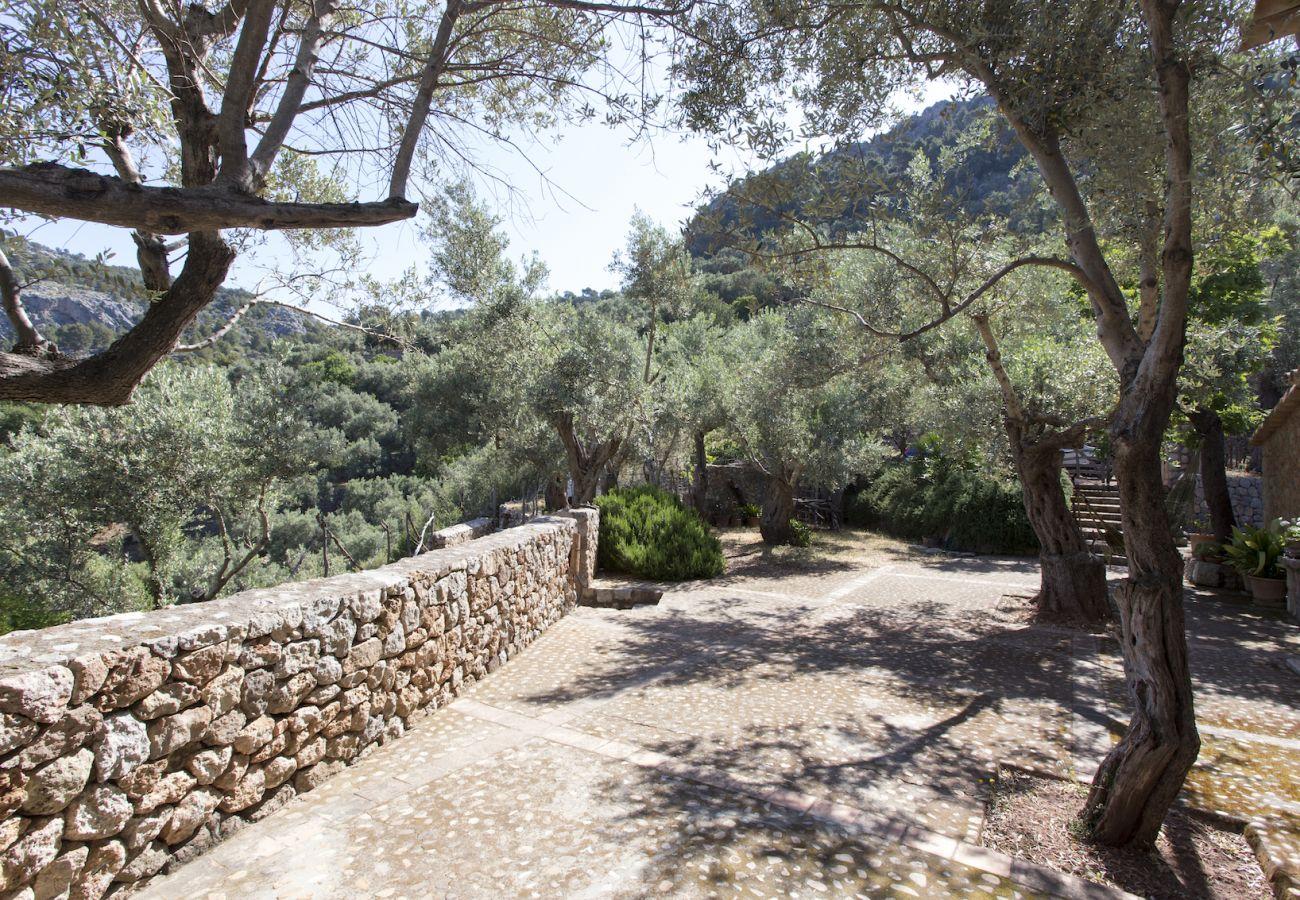 Villa en Sóller - Villa Es Cocó Sóller
